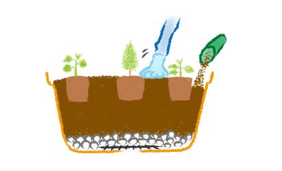 寄せ植えの植え付け