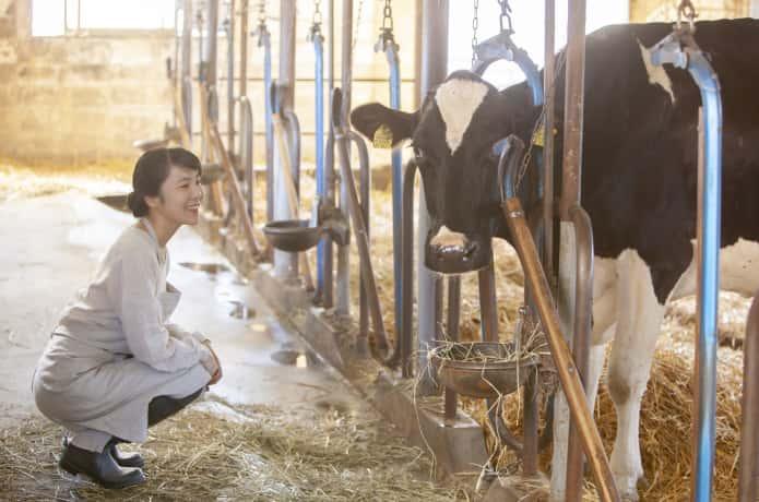 牛舎の中にいる女性