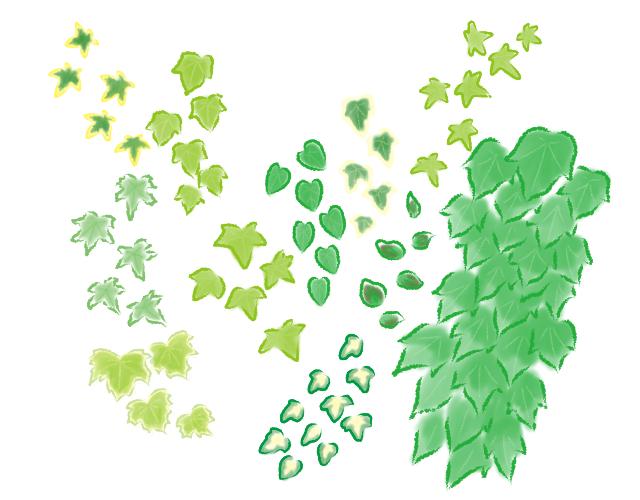 アイビー、いろいろな葉の種類
