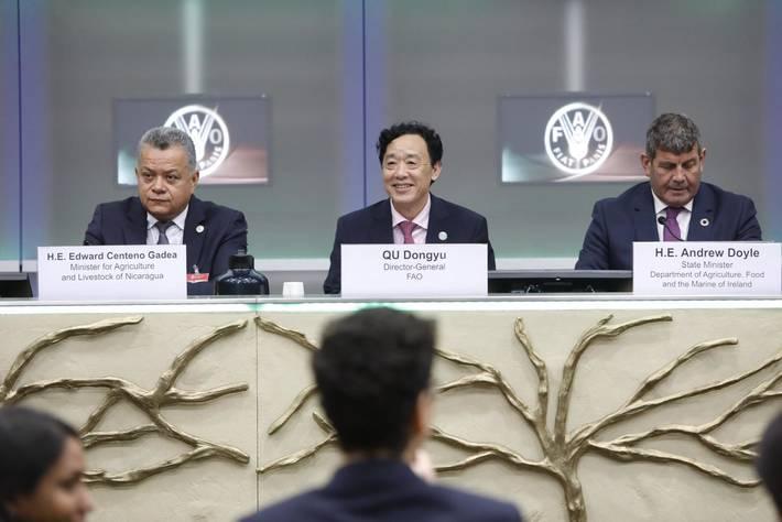 FAO会議風景
