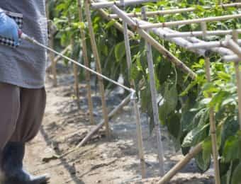 散布機を使って液体の農薬を散布