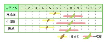エダマメ 新規就農レッスン 栽培カレンダー