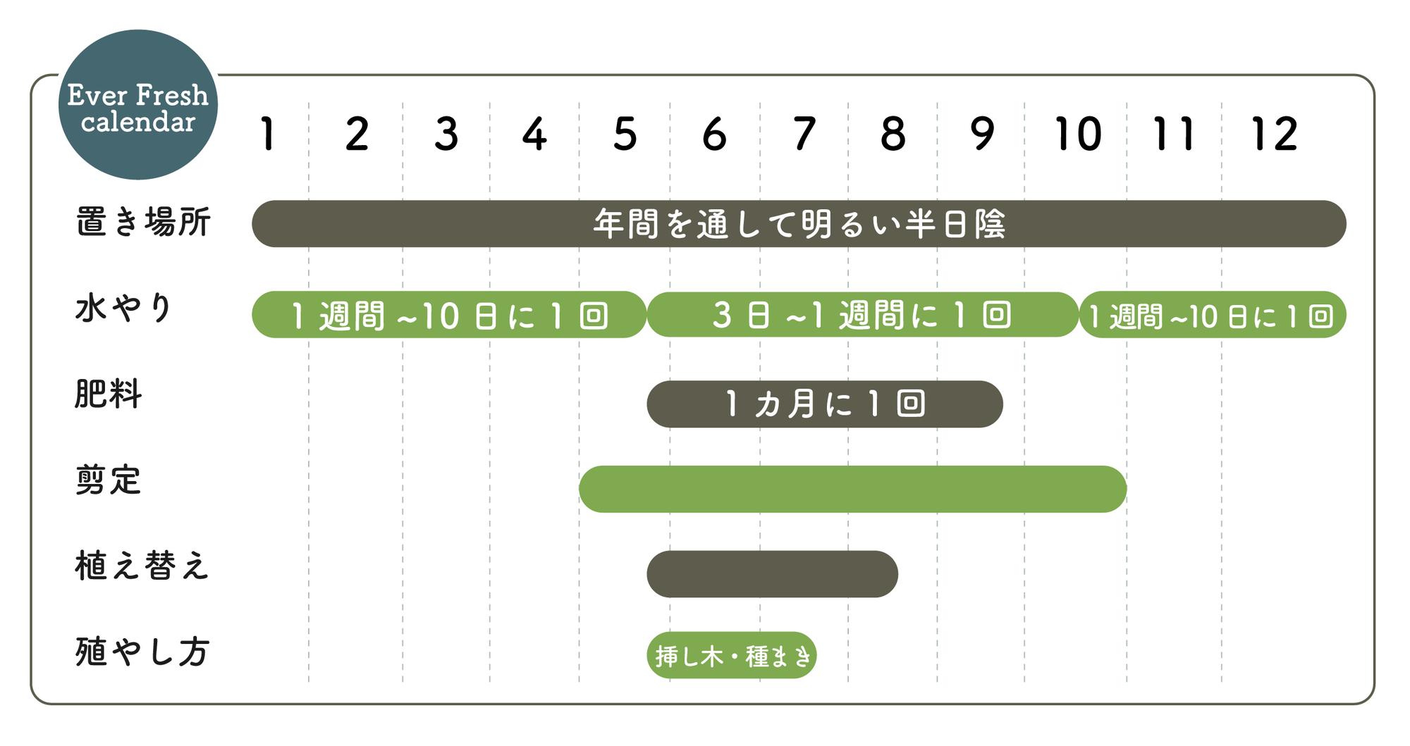 エバーフレッシュ栽培カレンダー