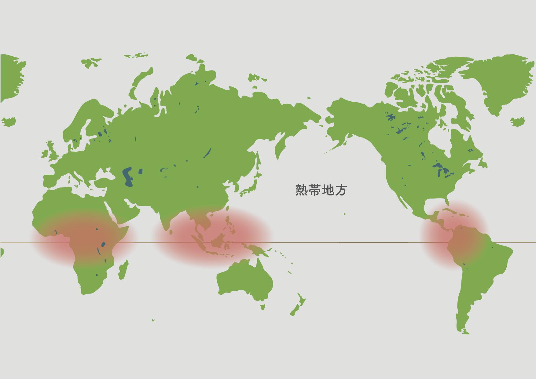 ゴムの木の原産地地図