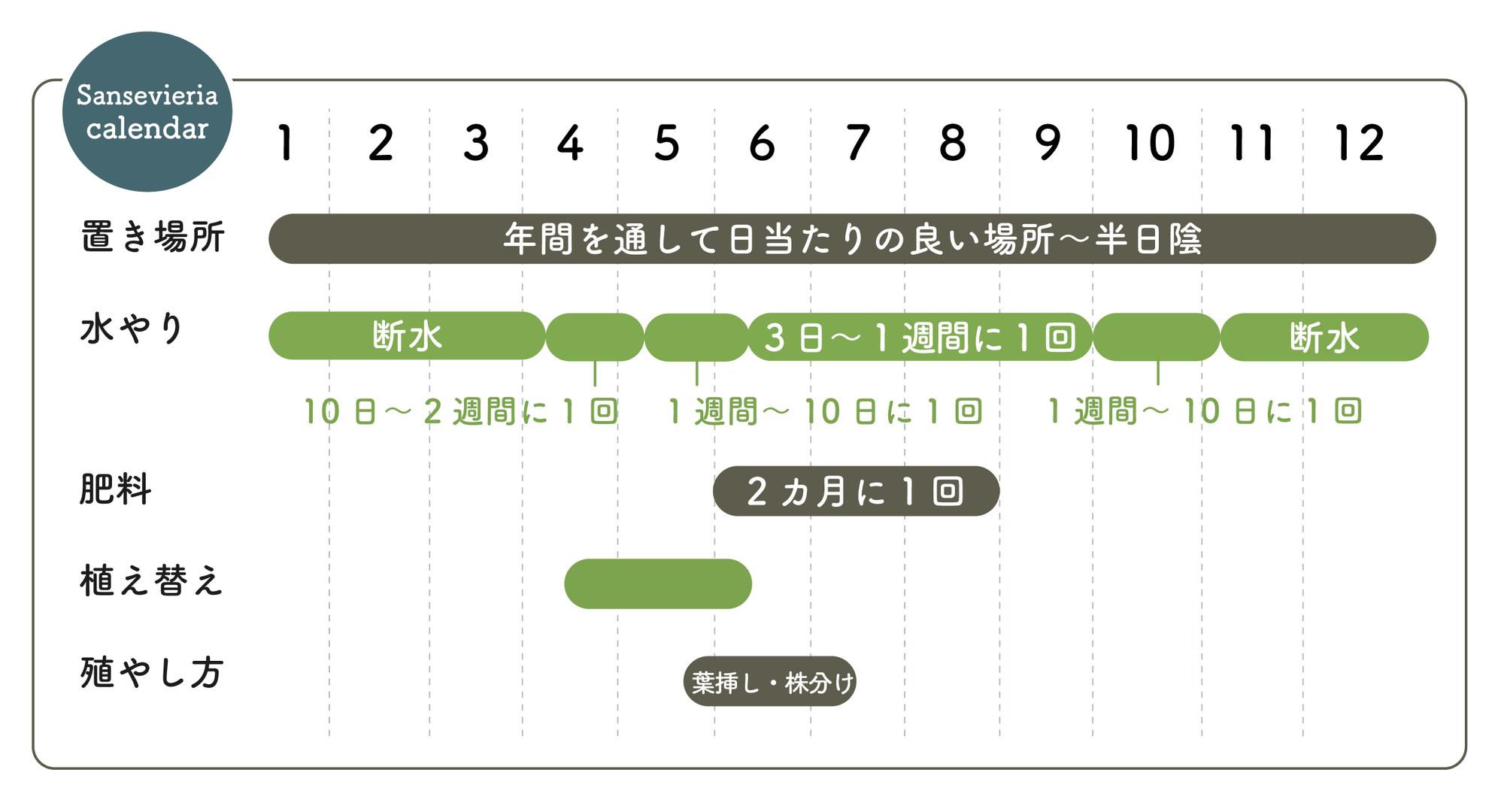 サンセベリアの栽培カレンダー