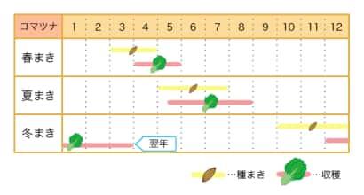 コマツナ栽培カレンダー