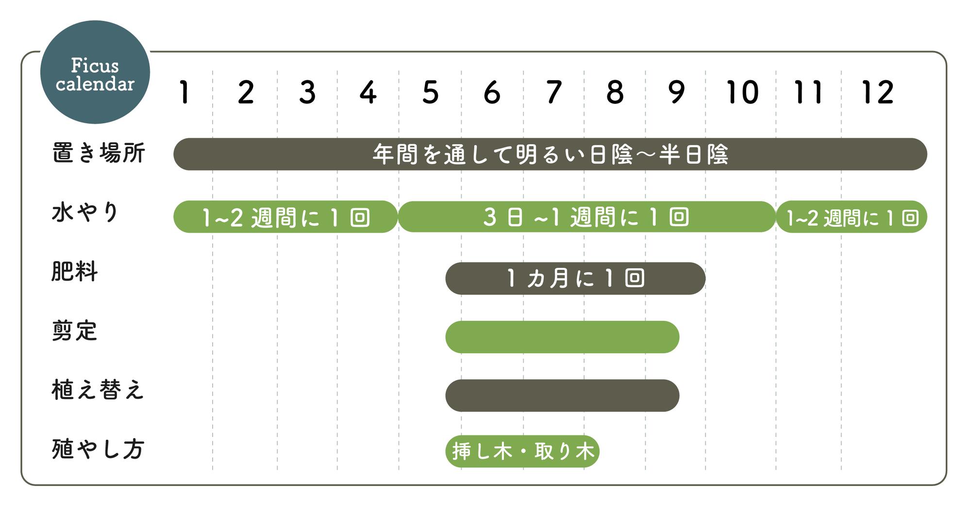 ゴムの木栽培カレンダー
