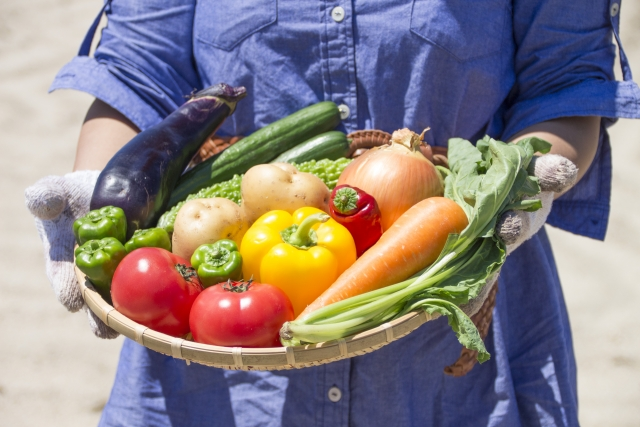かごに盛られた野菜を持った手
