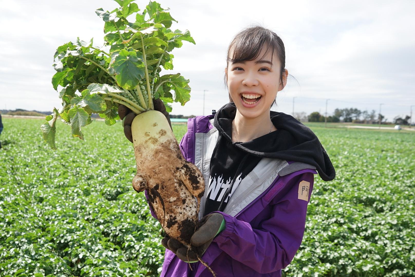 農業体験に参加した高校生
