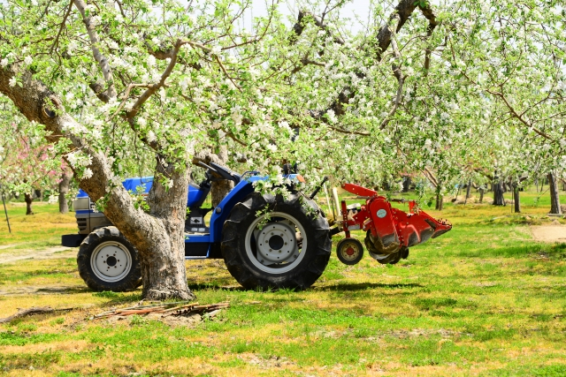 りんごの花と農機具