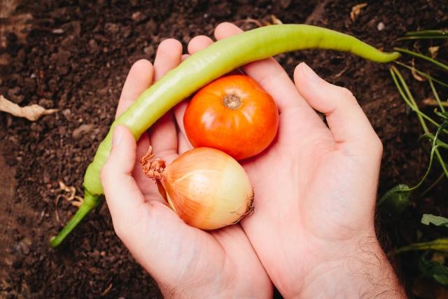野菜を持つ手