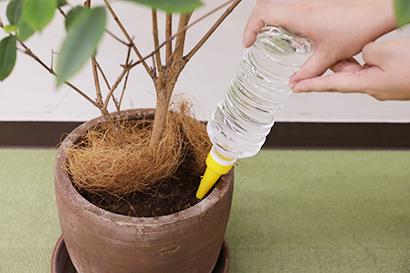 ダイソー給水キャップ使用方法