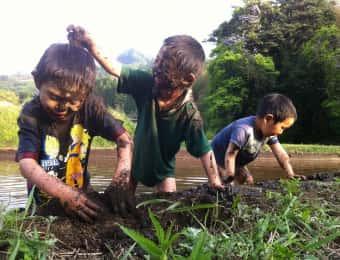 田んぼの中で泥だらけになる子どもたち