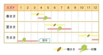 ミズナ栽培カレンダー