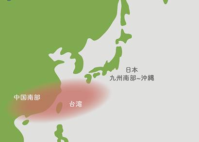 ソテツ原産地 地図