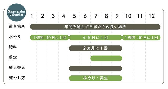 ソテツ栽培カレンダー