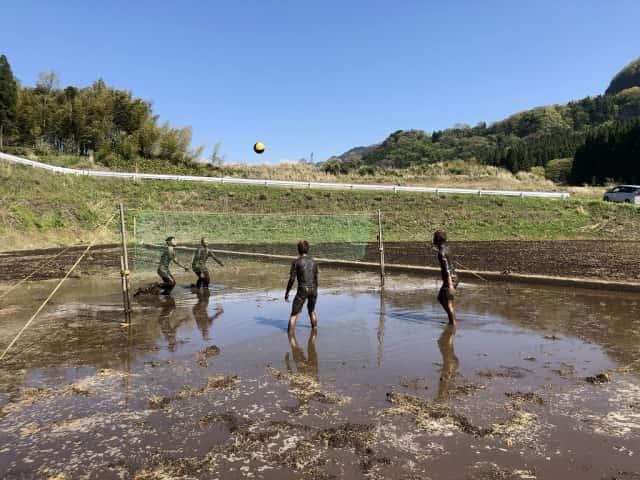 田んぼでビーチボールをする少年たち