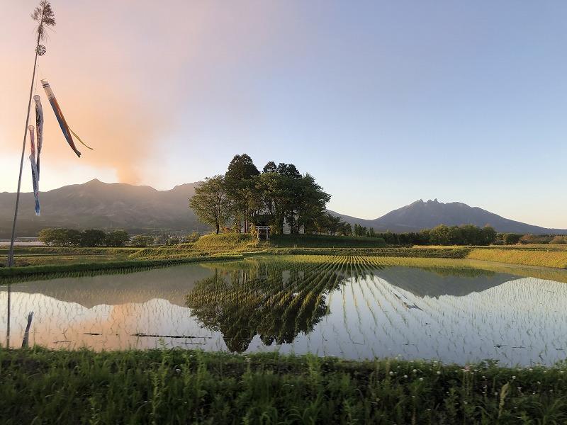 美しい田んぼの風景