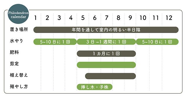 フィロデンドロン栽培カレンダー