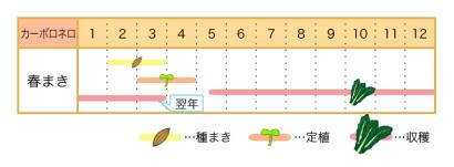 カーボロネロの栽培カレンダー