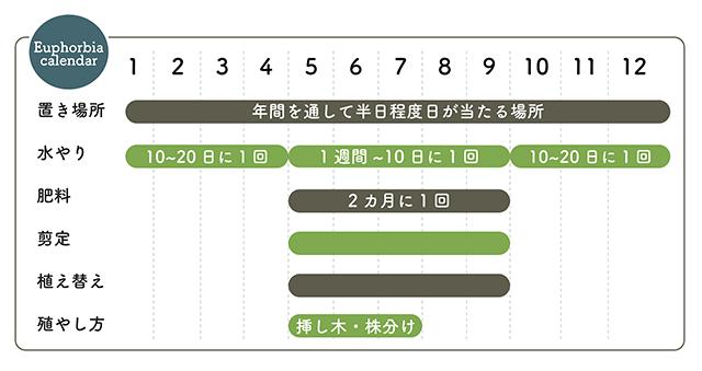 ユーフォルビア栽培カレンダー