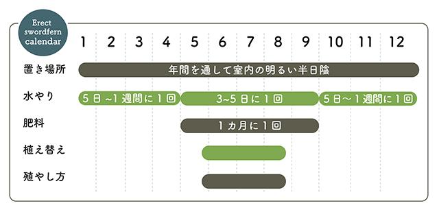 ネフロレピス 栽培カレンダー
