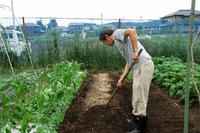 元肥を土に混ぜる