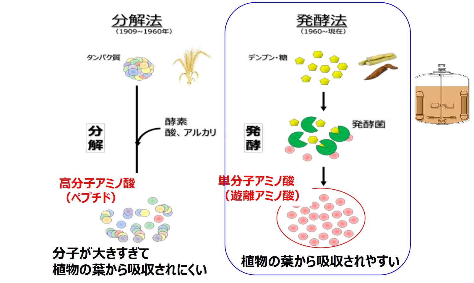 分解法と発酵法の図