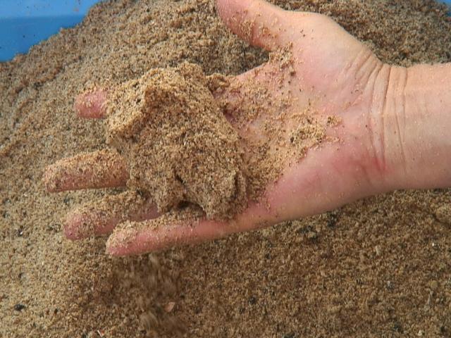 ぼかし肥料を手で握る