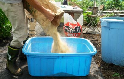 バケツに米ぬかを入れる