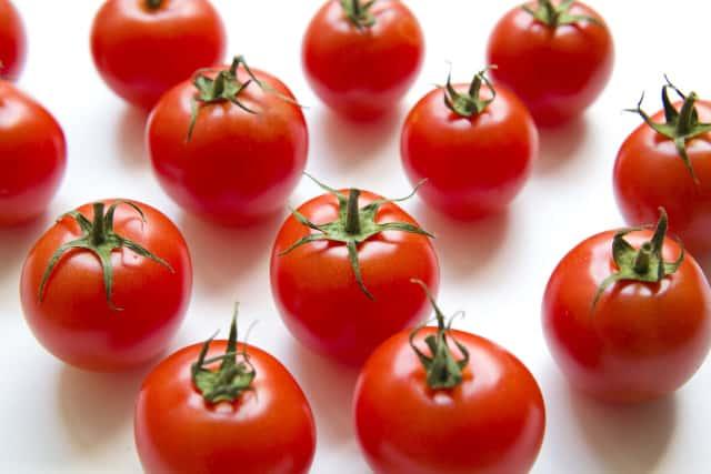 整列したミニトマト