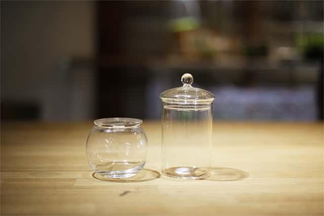 苔テラリウムの容器2種類
