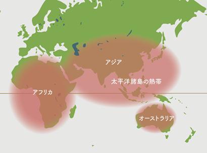 ポリシャス原産地 地図