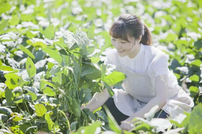 家庭菜園を楽しむ女性