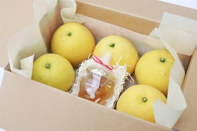 食べチョク「ご近所出品」河内晩柑とはちみつセットセット例