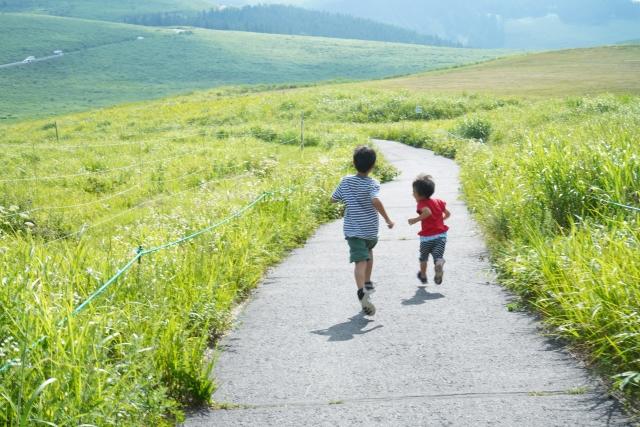 草原を走る子供二人