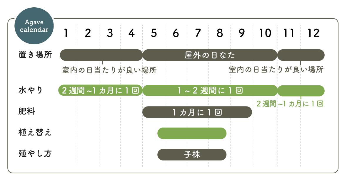 アガベ 栽培カレンダー