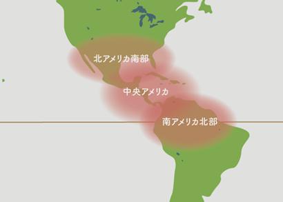 アガベ 原産地 地図