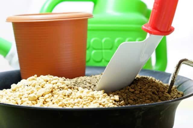 土が入った植木鉢