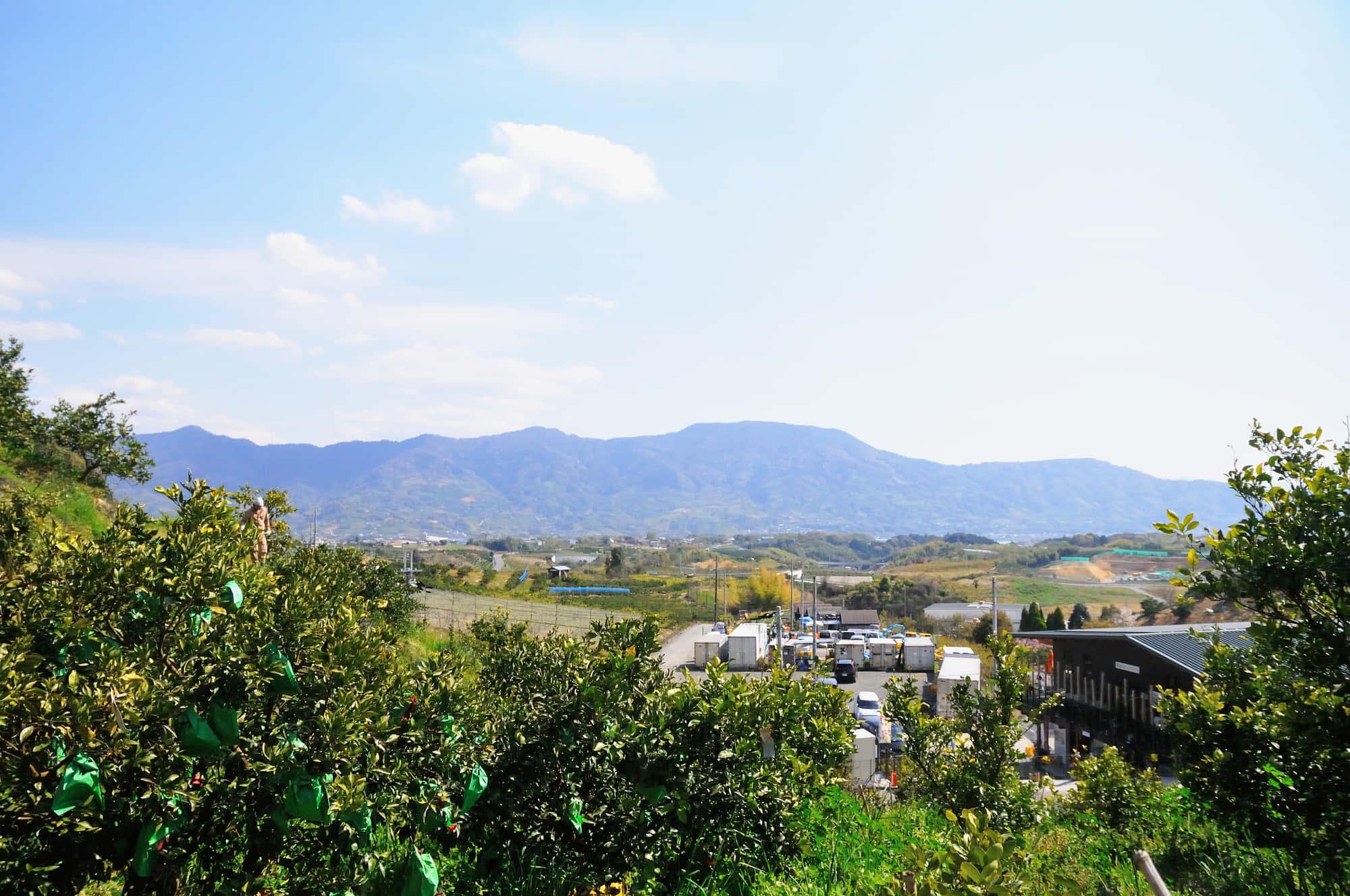 観音山フルーツガーデン