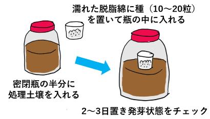 土壌消毒剤での消毒終了後のガス抜きを調べる発芽テスト