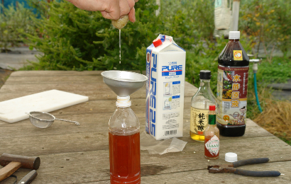 ストチューにニンニクの絞り汁を入れる