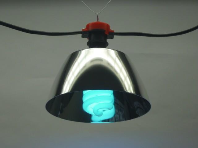 点灯中の紫外線ランプ