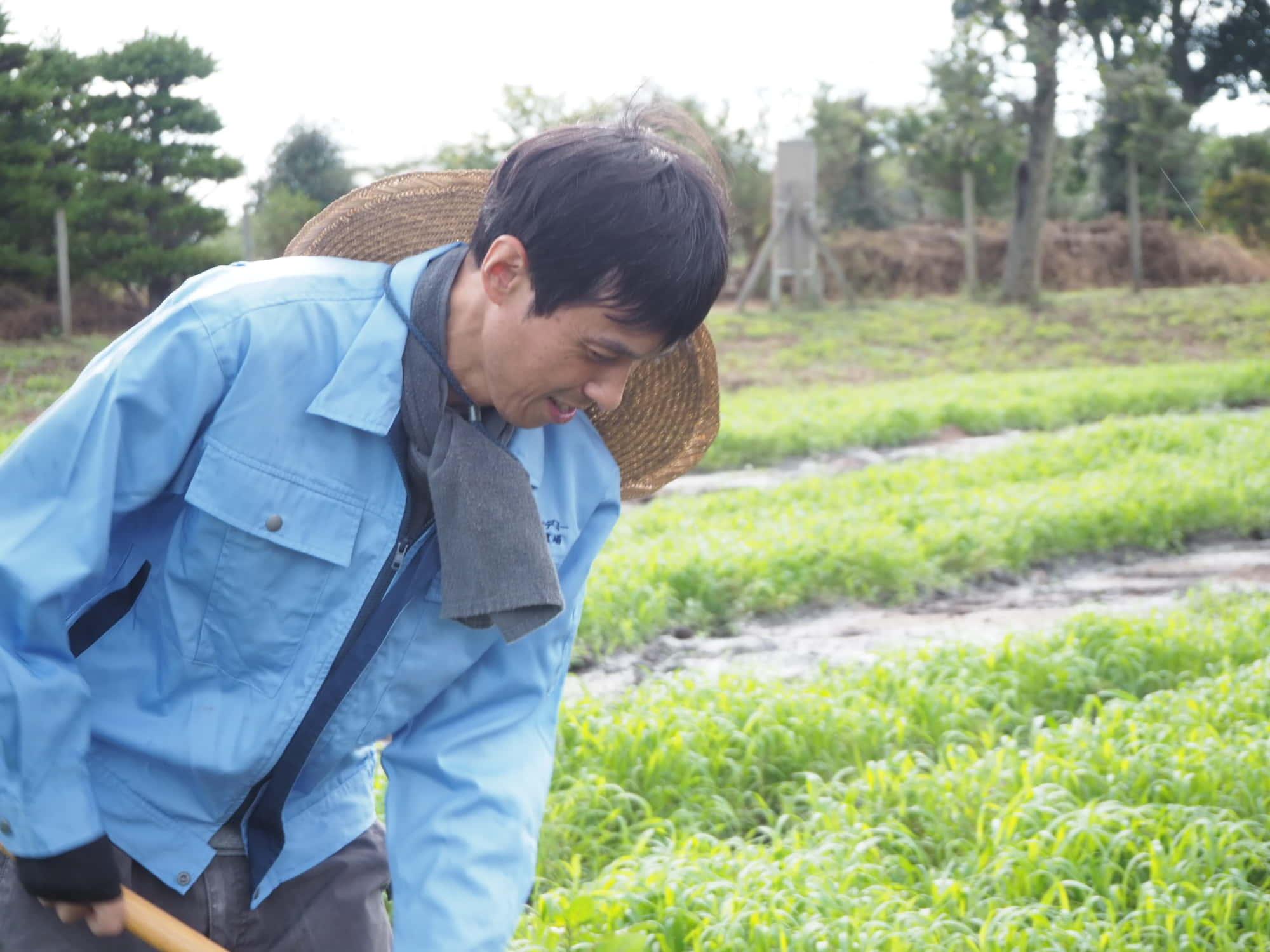 畑を耕す飯田さん