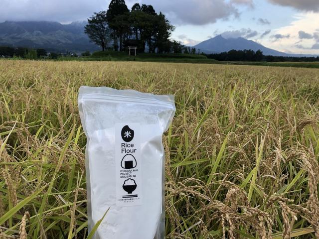 稲穂と米粉