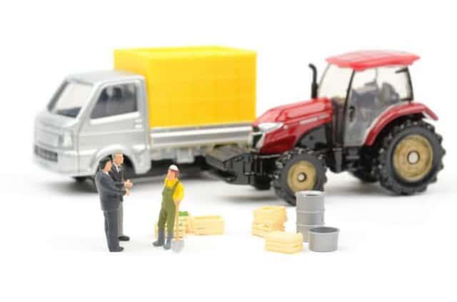 農業法人化