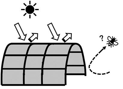 光防除における視覚遮断