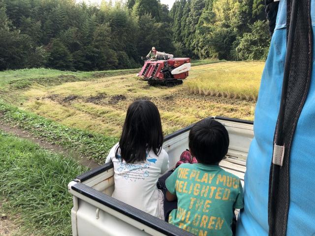 軽トラックの上からコンバインを見る子どもたち