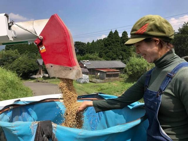 収穫された米を触る女性農家