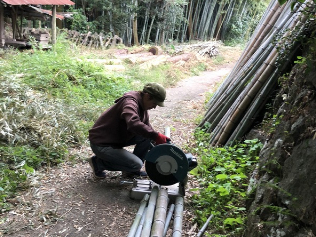 竹を切る女性